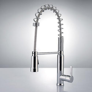 Ennis Kitchen Faucet with Spring Spout