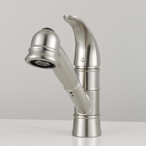 Hoover Single-Hole Pull-Out Kitchen Faucet