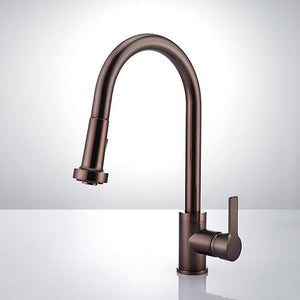 Paisley Single-Hole Pull-Down Kitchen Faucet