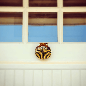 Sea Scallop Door Knocker - Small
