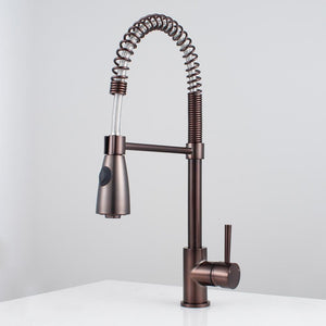 Winshaw Pull-Down Kitchen Faucet with Spring Spout