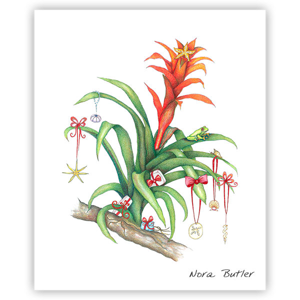 Bromeliad Blessings by Nora Butler