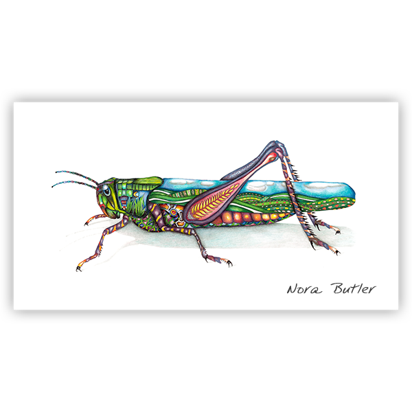Grasshopper Limited Edition Print