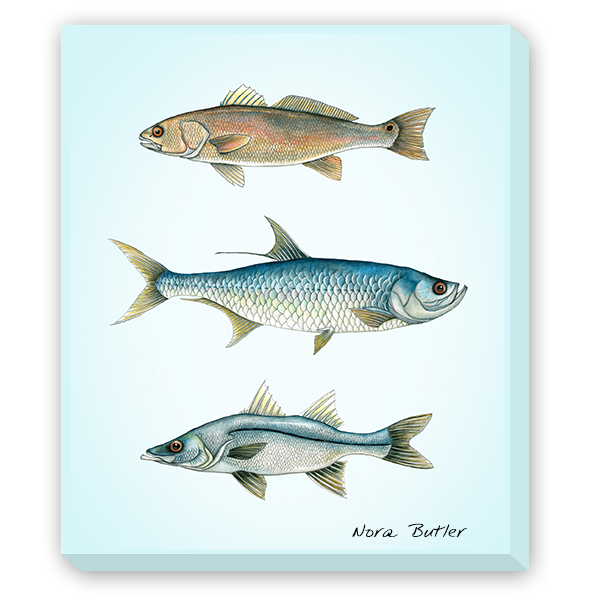 Trio Grande Giclee Canvas by Nora Butler