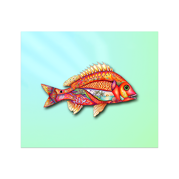 8x10 Fantasy Fish Canvas