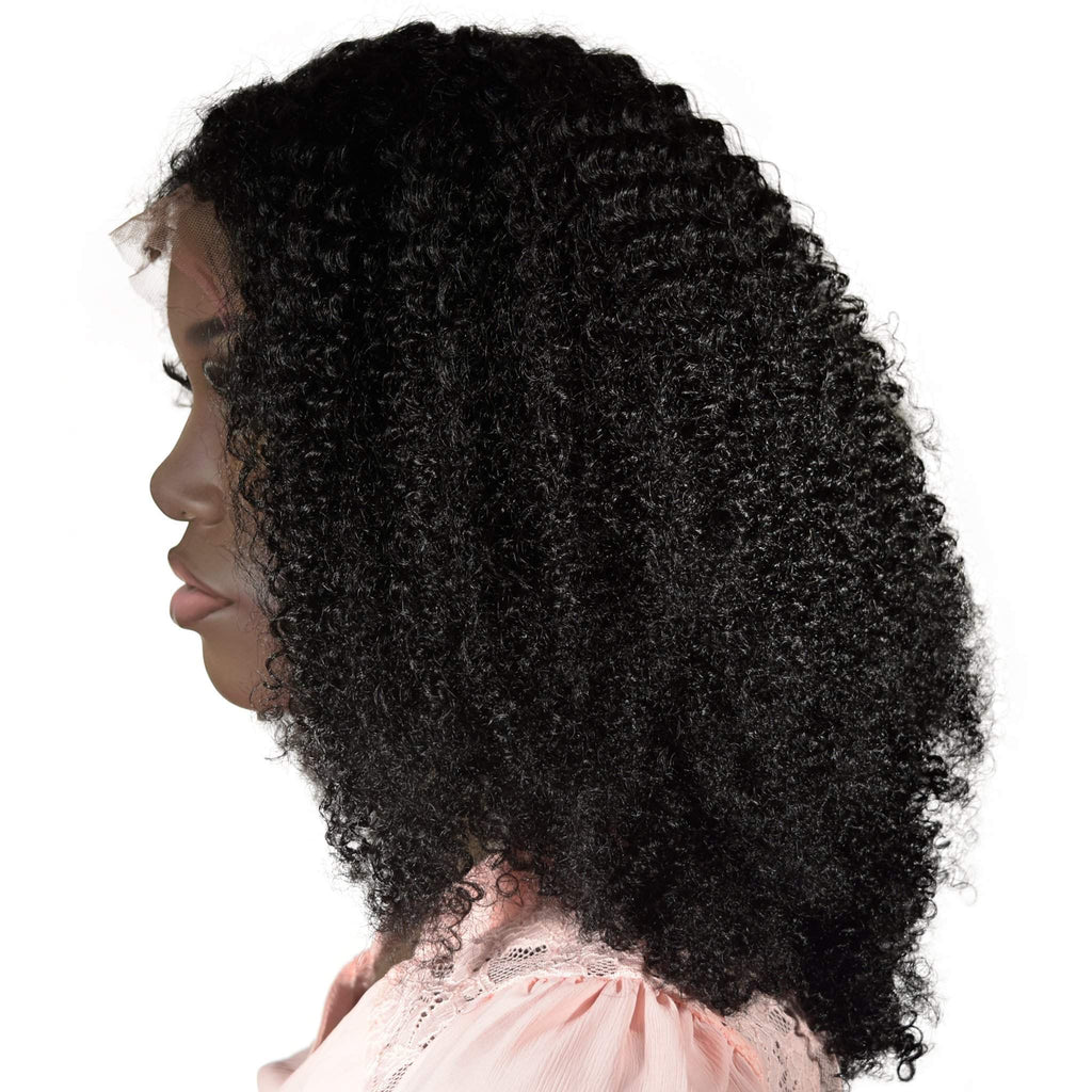Asia Afro Curly Full Lace Wig - De Novo Hair