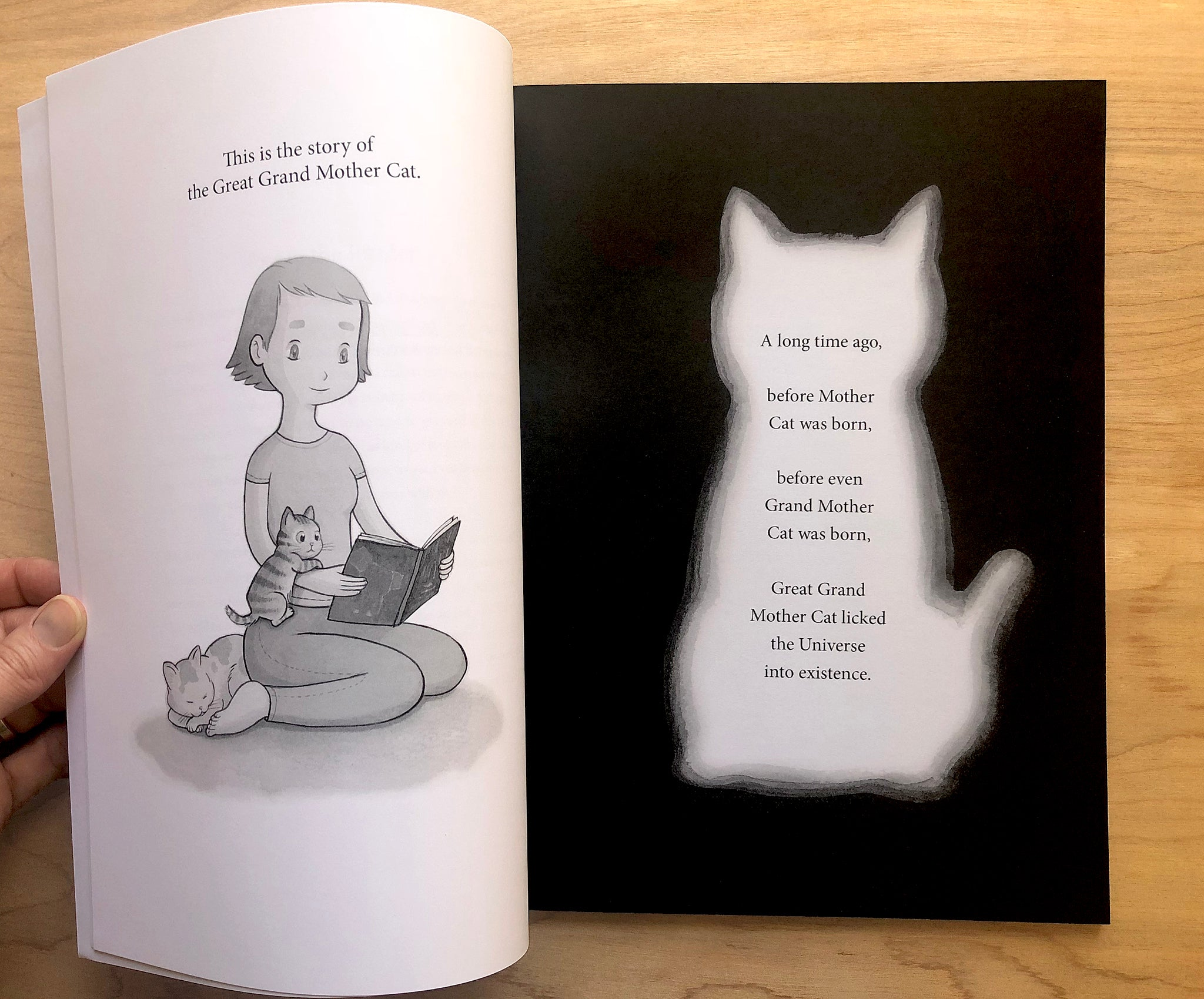 Great Grand Mother Cat & the Echoing Voices, Illustrated Book