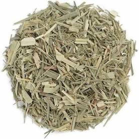Lemongrass cut (Cymbopogon citratus)