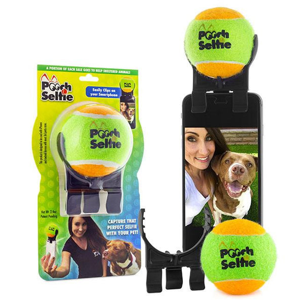 Pooch Selfie / Take the Best Selfie with your BFF
