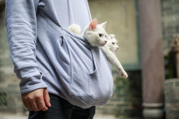 Furry Friends Hoodie with Cuddle Pouch