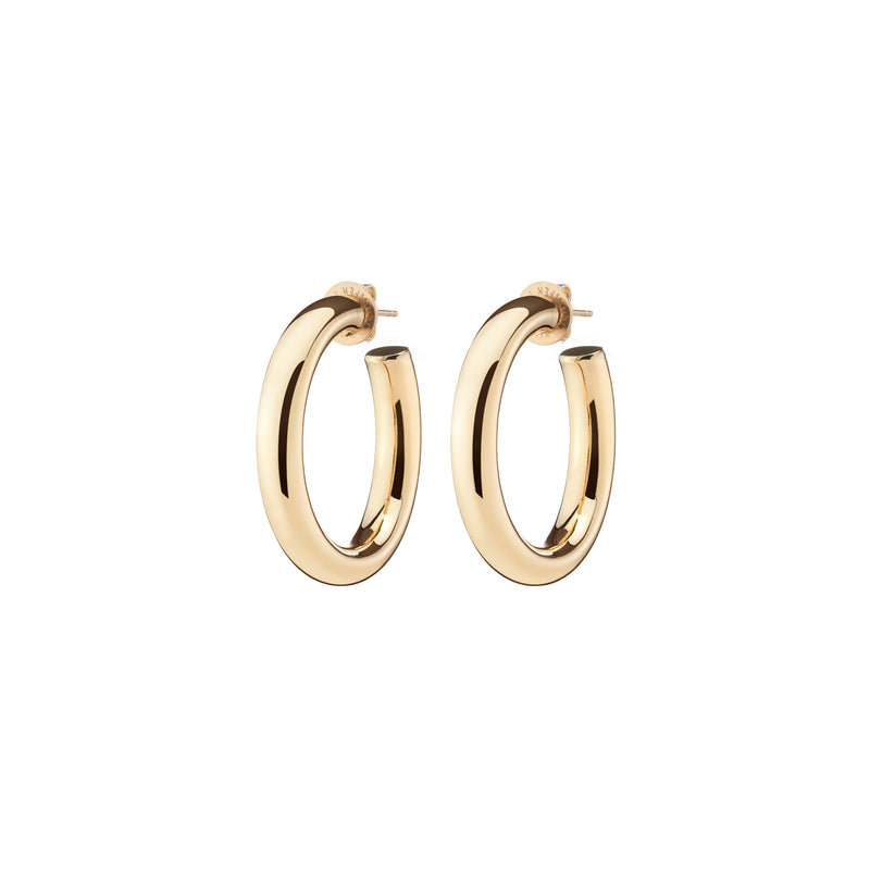 Fine Mini Natasha Hoops