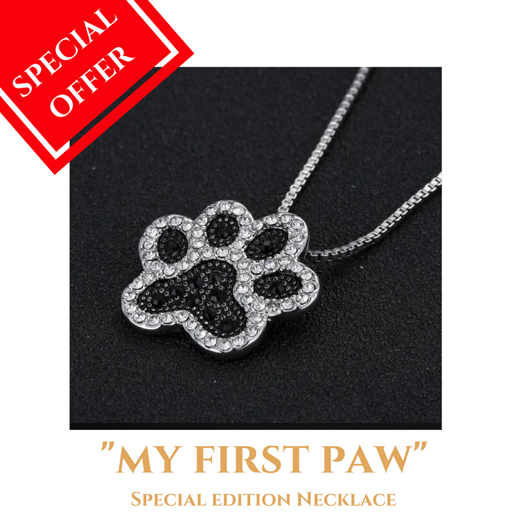 "Dog Mom -""MY FIRST PAW"" Necklace"