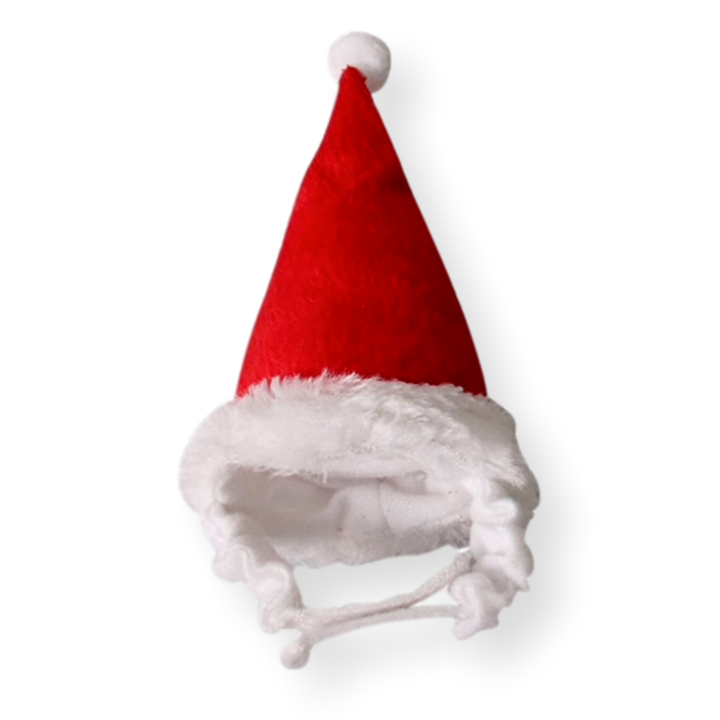 Coatsville Small Animal Christmas Santa Hat