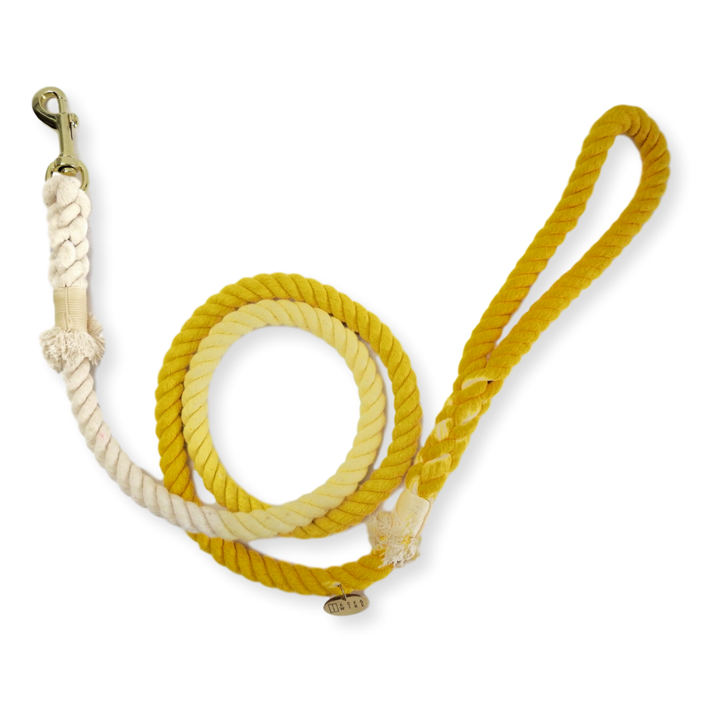 Tack & Twine Standard Cotton Leash Hello Yellow