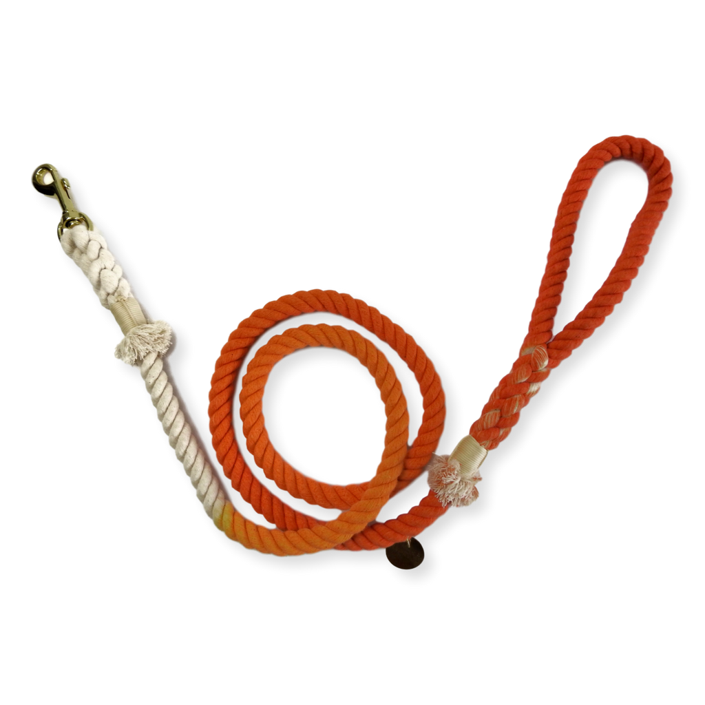 Tack & Twine Standard Cotton Leash Orange
