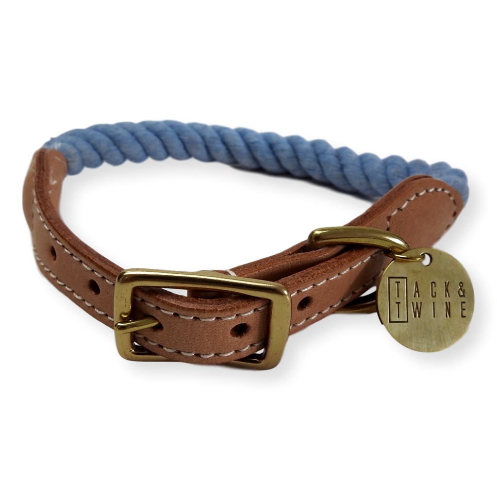 Tack & Twine Standard Cotton Collar China Blue
