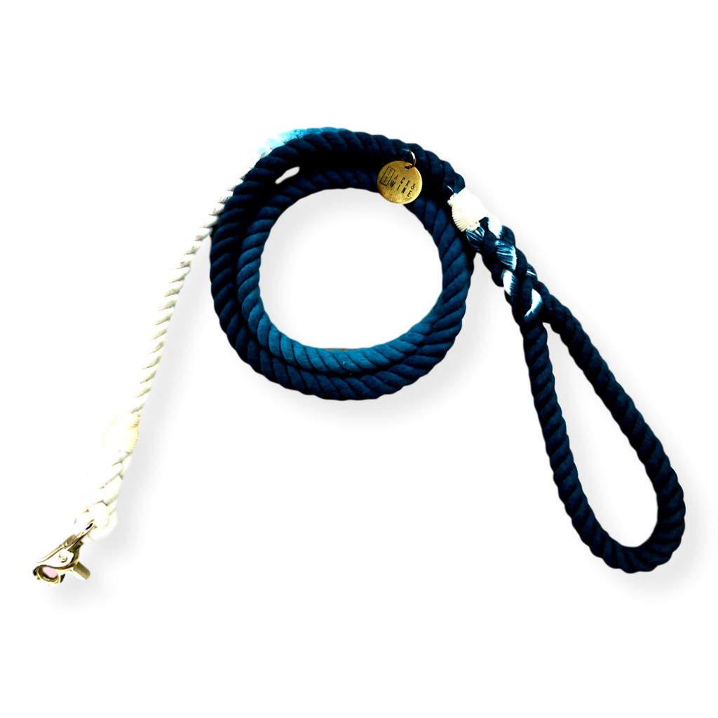 Tack & Twine Standard Cotton Leash Peacock Blue