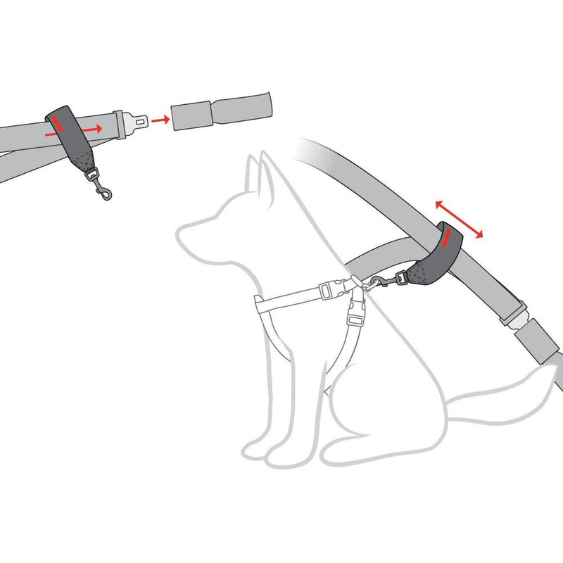car-restraint-diagram_ROKTKWQYEBCV.jpg