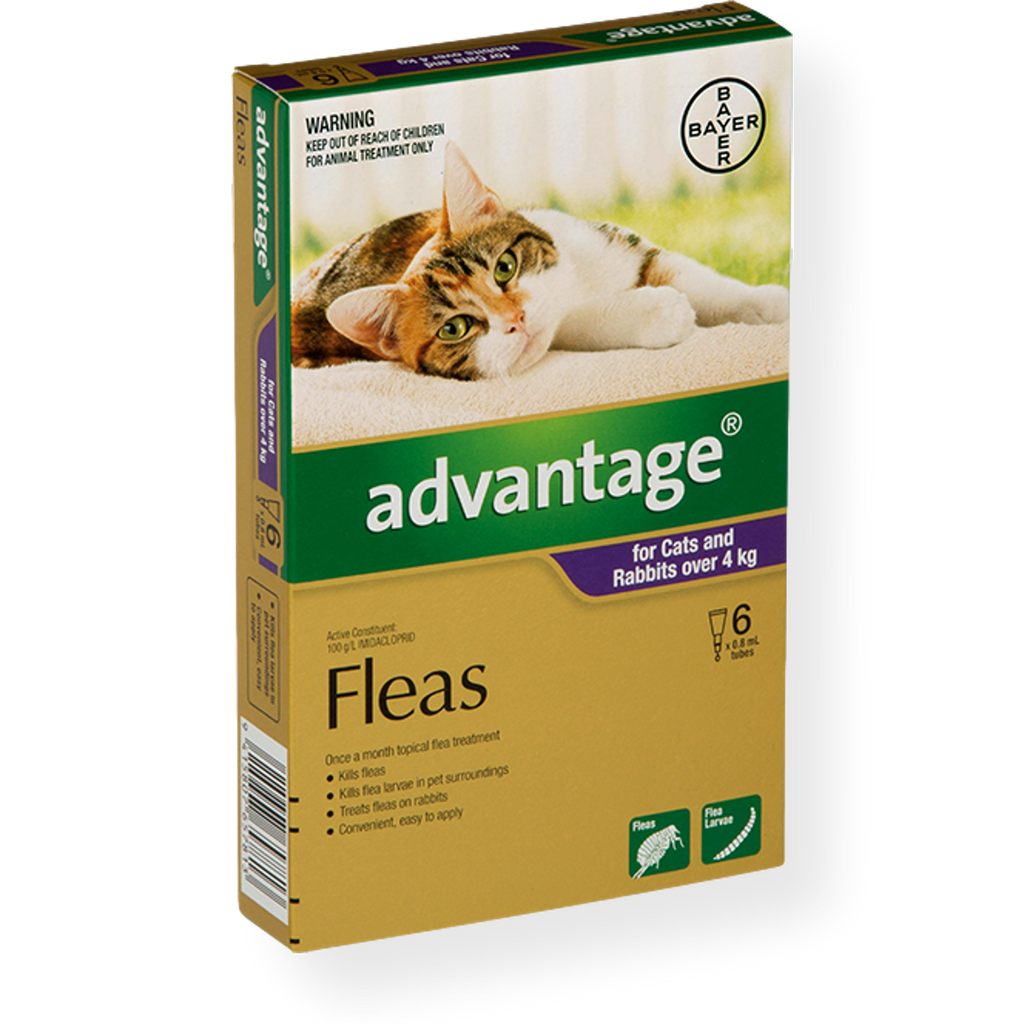 Advantage Spot On Large Cat Flea Treatment 4-10kg