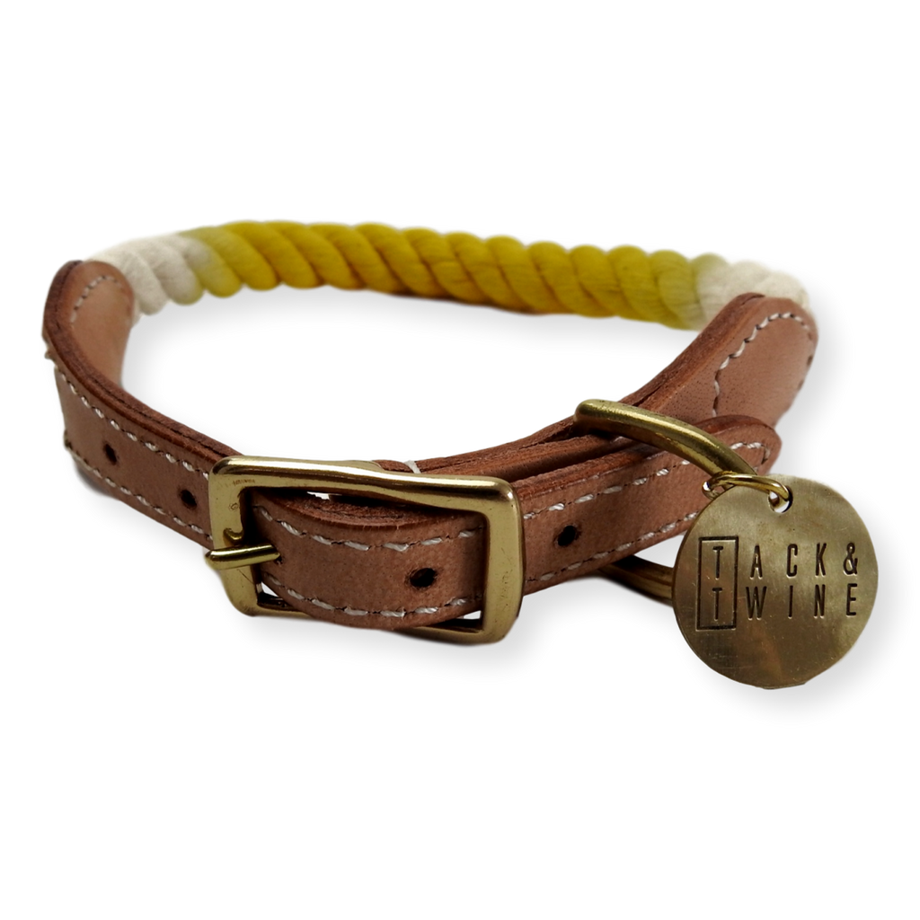 Tack & Twine Standard Cotton Collar Hello Yellow