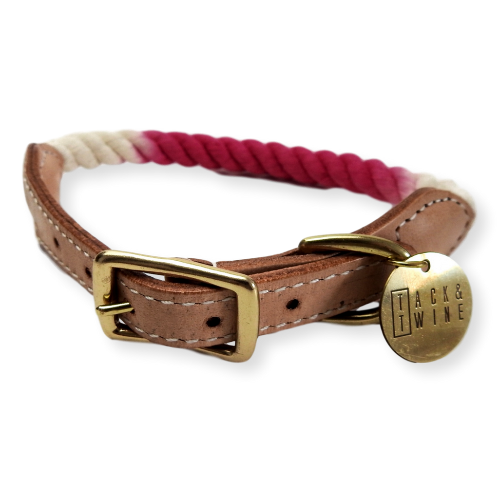 Tack & Twine Standard Cotton Collar Hot Pink