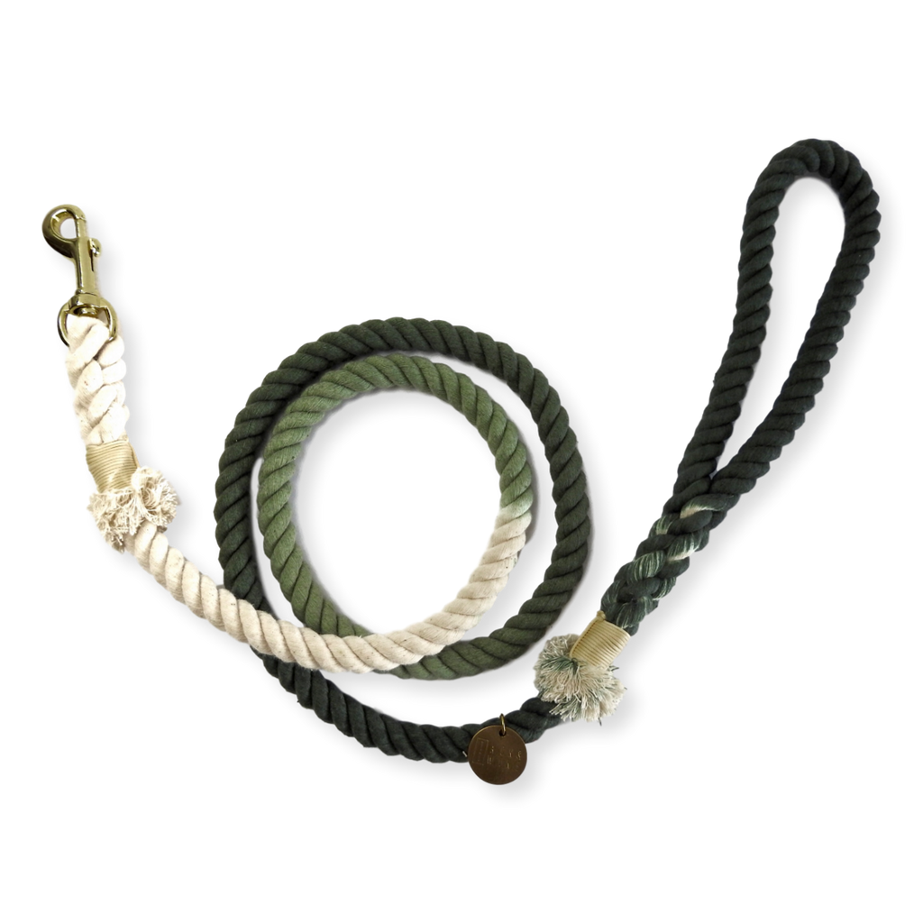 Tack & Twine Standard Cotton Leash Khaki Green