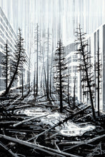 Windfall (Toronto + Banff + Kootenay National Park), Limited Edition Print