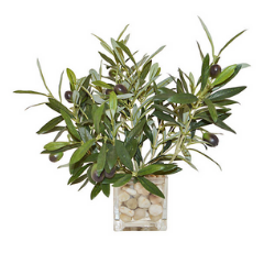 Artificial Faux Olive Branches and Vase