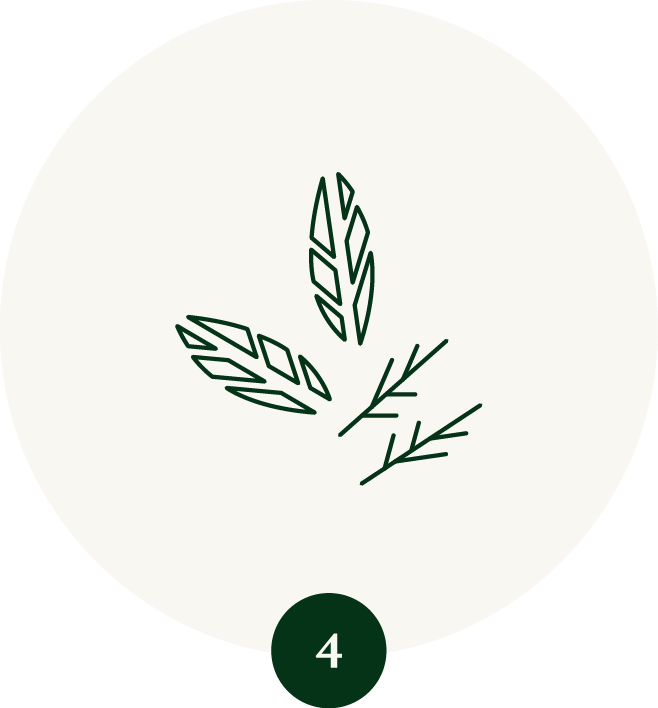 Steamed and Dried Tencha Leaves Icon