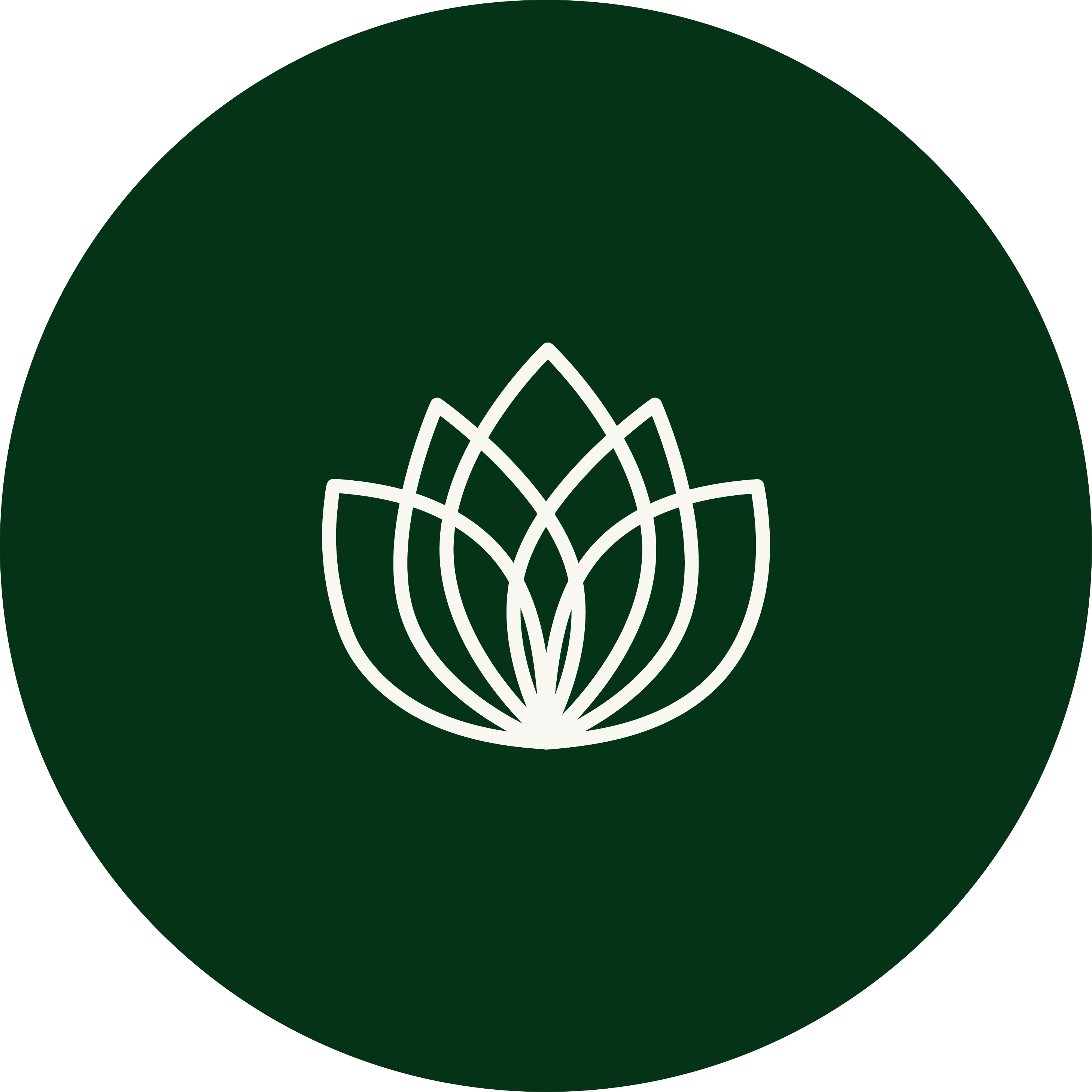 Matcha Green Tea Mind, Body and Spirit Benefits Icon