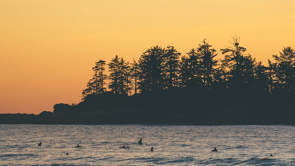 Group of surfers in wetsuits waiting for a wave in Tofino