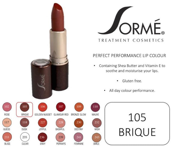 SORME COSMETICS Perfect Performance Lip Color, 105 Brique, 0.14 Oz (4g) - ADDROS.COM