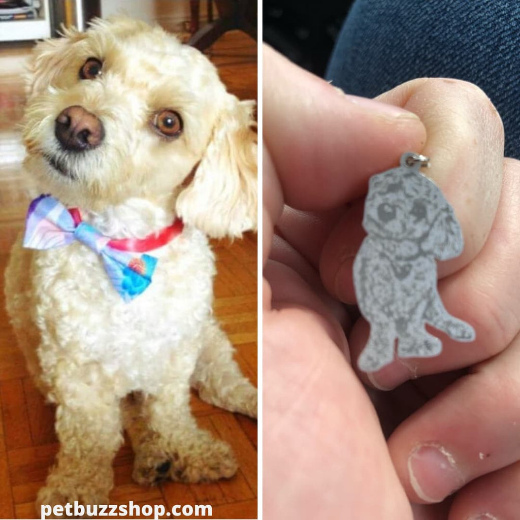 necklace with dog picture inside