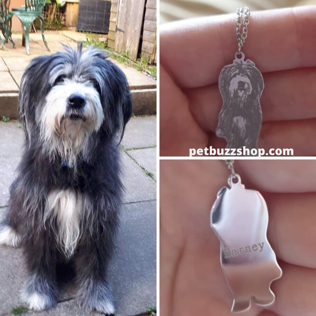 Personalized 925 Sterling Silver Pet Necklace