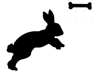 Only Dog Rabbit w/bone
