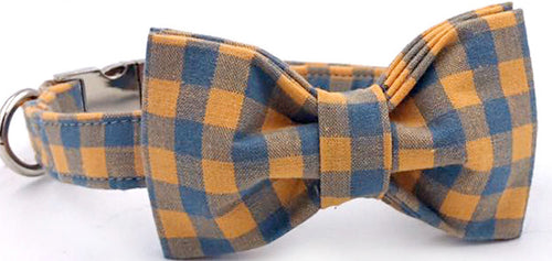 Collar and Bowtie
