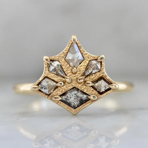 Arya Salt & Pepper Kite Rose Cut Diamond Ring