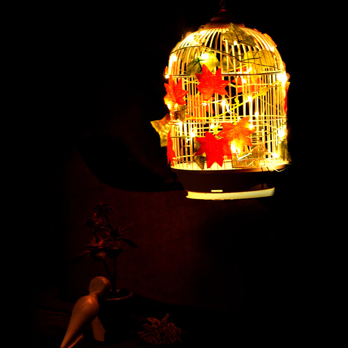 Bird Cage Chandelier (Medium)