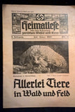 Hitler Youth Wildlife Newspaper July 1935