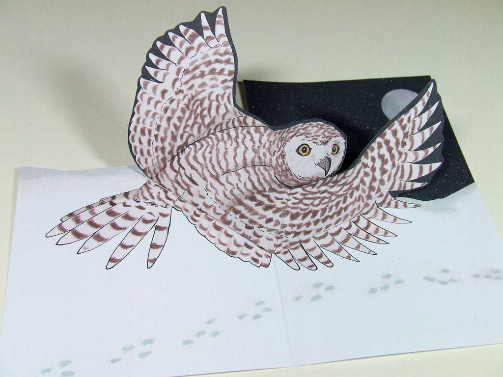Snowy Owl Pop Up Card