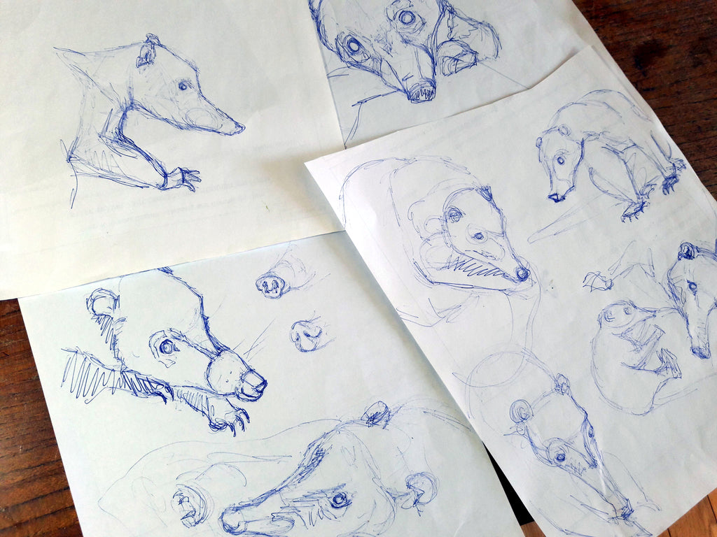 Sketches of Coatis