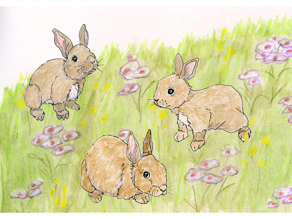 Baby Bunnies in Flower Meadow