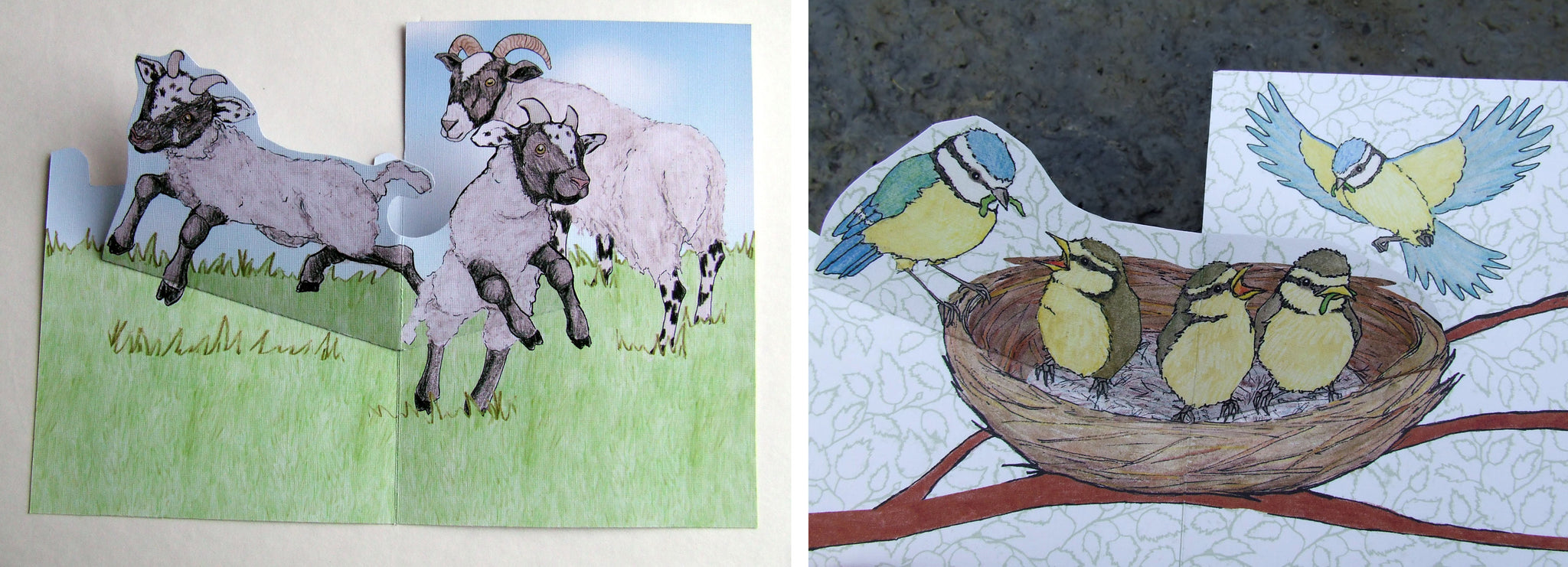 Spring Lamb and Blue Tit Pop Up Cards