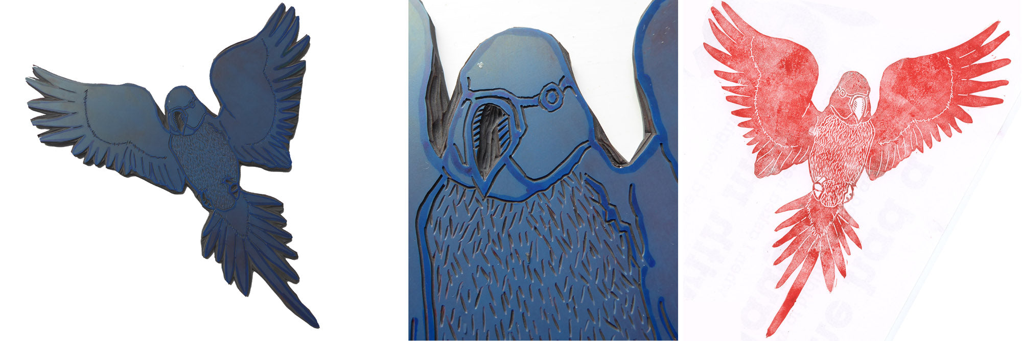 Linocut of parakeet in draft form