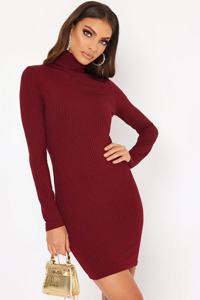 Burgundy Roll Neck Long Sleeve Ribbed Mini Dress by I Saw It First