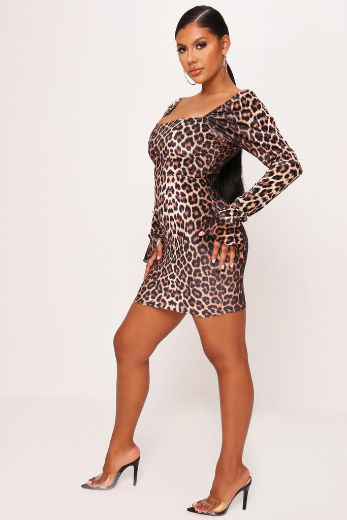 Brown Leopard Print Velvet Mini Dress view 3