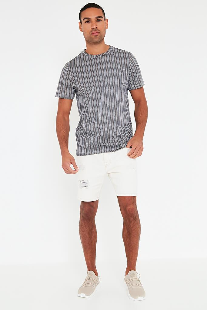 Grey Mens Striped T Shirt view 2