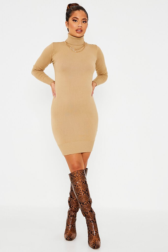 Camel Roll Neck Knit Dress view main view