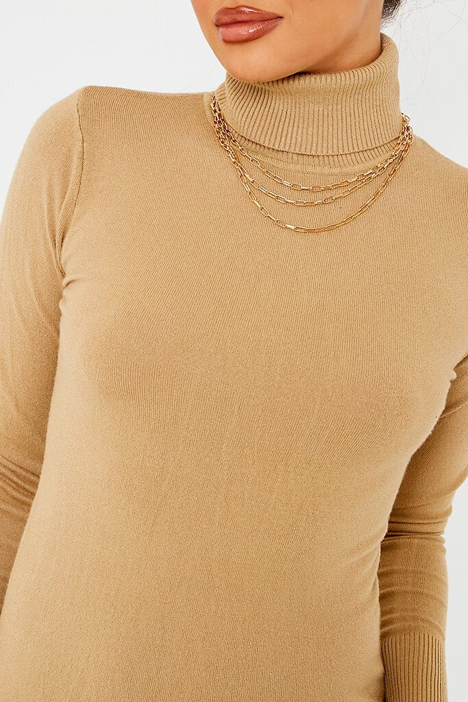 Camel Roll Neck Knit Dress view 4