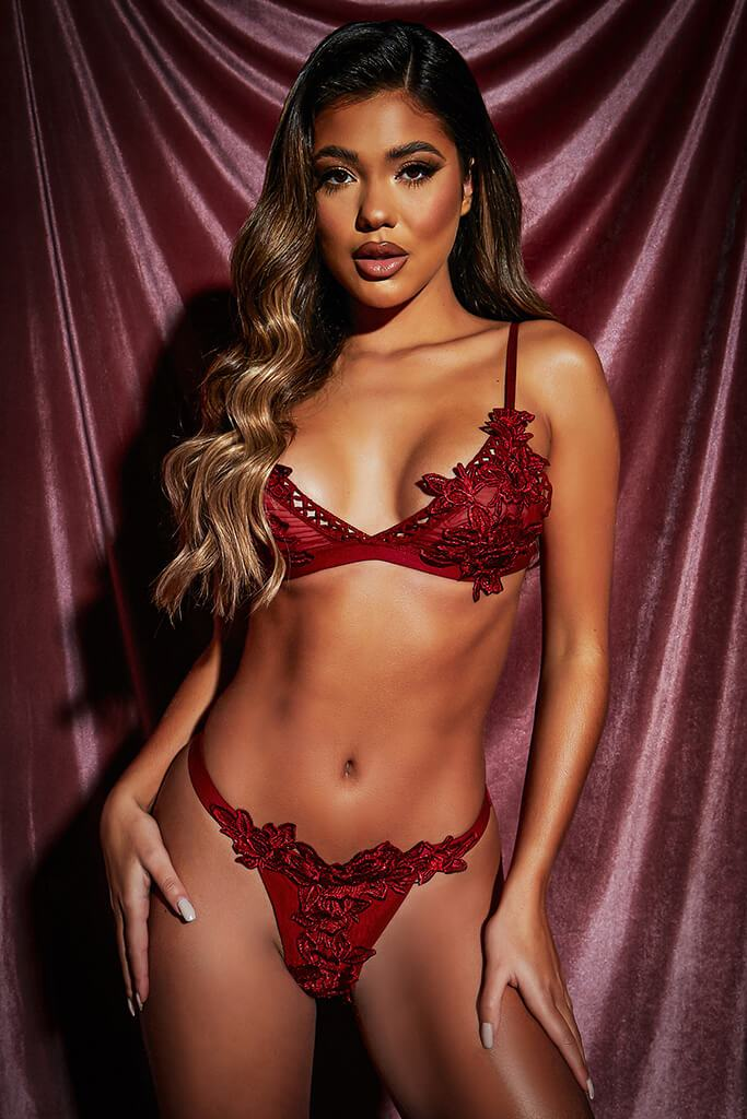Red Lace Applique Trim Lingerie Set view 2